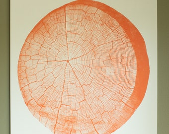 Orange Tree Stump Tree Rings Large Screen Print 18 x 24