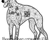 Greyhound Coloring Page, Printable Coloring Pages, Adult Coloring Pages, Hand Drawn, Digital Illustration, INSTANT DOWNLOAD PRINT