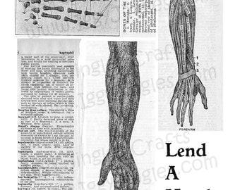 Vintage Anatomical Hand and Arm Etchings - Greyscale Collage Sheet Digital Download for Halloween Crafting and Decor