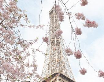 Paris Photography, Cherry Blossom Season, Pretty in Pink, Paris in the Springtime, Pink Cherry Blossoms Eiffel Tower, Paris Home Decor