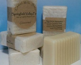 Camel Milk Soap - Unscented