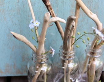 Beach Driftwood & Bottle Collection of 3 for Coastal Decor and Nautical Decoration