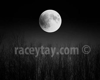 Full Moon Print, Black and White Moon Photography, Super Moon, Pagan, Lunar, Super Moon, Birch Tree Branches