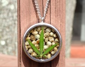 REAL Marijuana Leaf & Seeds Necklace