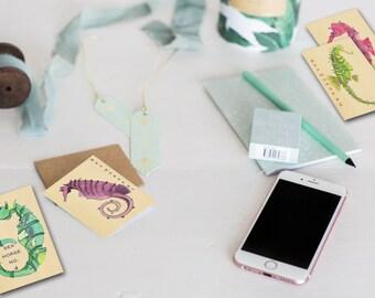 Note Cards Seahorse Watercolor