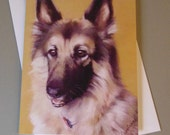 Sarge the Dog art card by...