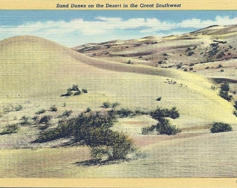 1930s Vintage Arizona Desert Postcard