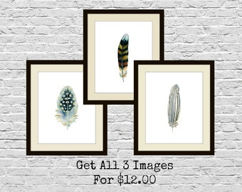 Watercolor Feather Printables, Feather Wall Art, 8x10 Size Instant Printables, Nursery Art, Boys Room, Wall Decor, Blue & Grey Bird Feathers
