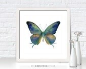 Blue Green Butterfly Painting, Butterfly Wall Art, Butterfly Print, Original Butterfly Watercolor, Butterfly Greeting Cards, 57 Marsyas