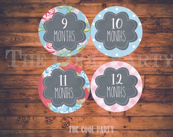 Baby Announcement, Monthly Baby Stickers, Monthly Baby Photos, Baby Gift, Baby Month Stickers, Monthly Stickers