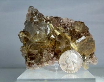 Quartz Crystal Cluster Heavily Rutilated Display Specimen Amazing Quality Display Specimen Minas Gerais, Brazil 300 grams in Weight
