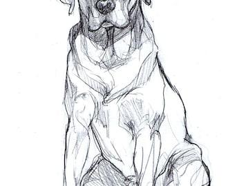 Custom Full Body Pet Drawing