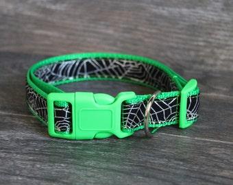 Spider Web Halloween Dog Collar