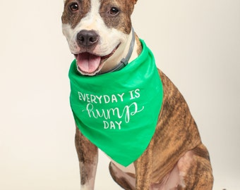 Dog Bandana - Dog Collar - Tie on Bandana - Everyday Is Hump Day Bandana - Small and Large Dogs