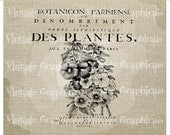 French flower decor Instant digital download image for iron on fabric transfer burlap decoupage scrapbooks pillows cards totes No. gt107