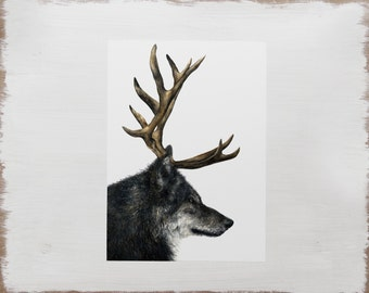 Wolf Print -- Stag Print // Animal Illustration // Watercolour Limited Edition Art