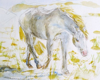 Original Watercolor White Horse