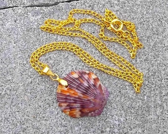 Real Natural Purple And Orange Scallop Seashell Shell Beach Ocean Mermaid Charm Pendant Necklace 17""