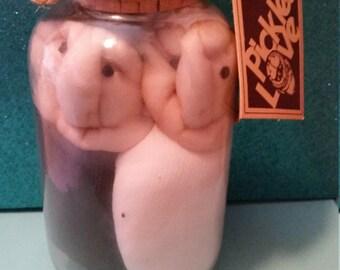 Vintage Pickled Love Sock People in a Jar