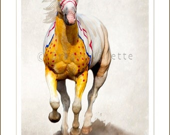 Poster of Palomino Painted Crow War Pony-1