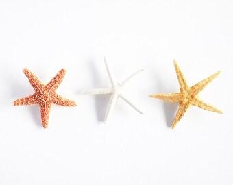 Set of 3 Starfish Mermaid Hair Clip - Mermaid Accessories, Bridal Accessories, Wedding Hair Clip, Starfish Hair Accessories