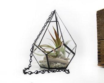 Hanging Terrarium - Medium Teardrop / Stained Glass Vivarium
