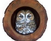 Tawny Owl Nest | A Fantastic Lucky Charm to Decorate your Home and a Unique Gift Idea for Owl Lovers! Painted Owls by Roberto Rizzo