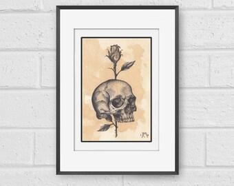 Skull and Rose Fine Art Print A5