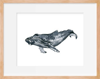 Humpback Whale 105 Print, Humpback Whale Art, Humpback, Whale Art, Whale Watercolor, Whale Wall Art, Whale Decor, Whale Illustration, Home D