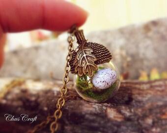 Bird Nest Necklace, Acorn Jewelry, Birds Nest Necklace, Easter Egg Necklace, Egg Nest Necklace Bird Nest Jewelry Miniature Terrarium Jewelry