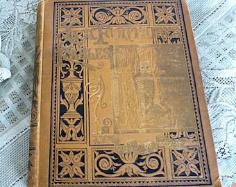 La Fontaine's Fables Book Antique Fables Book Gustave Dore Dore Illustrations Jean De La Fontaine The Dauphin Aesops Fables