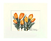 Yellow Crocus, Painting of Yellow Crocus, 8x10 Matted, Ready to Frame
