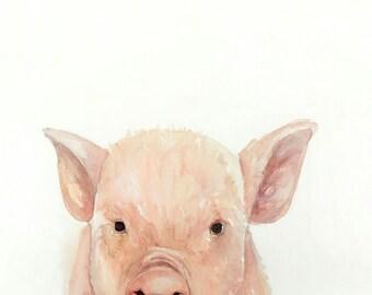 Baby Pig - Print