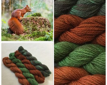 Hand Dyed Yarn, Hand Painted Yarn, DK, Mini Skeins, Superwash, Wool, Alpaca, Color: Into the Woods