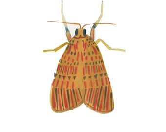 A5 Moth print