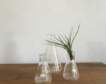 fathers day collection set of 3 Erlenmeyer flasks. mid century science lab ware. 1950s glassware. vintage glass interior design laboratory v