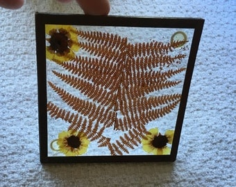 Pressed Flower coaster, Copper Framed, Plastic Button Feet, Heavy Glass, Genuine Fern and Flowers, Pressed Flowers