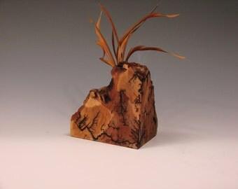 Fractal burned weed/twig pot