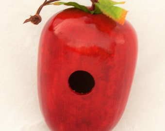 Red Delicious Apple Gourd Birdhouse