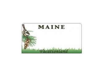 Design It Yourself Custom Maine State Look-Alike Plate #2 - ME2