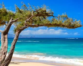 art print, wall decor, beach photography, home decor, fine art, beach pictures, seascape, sandy beach, aqua blue, turquoise water, hawaii