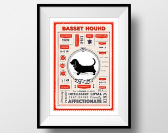 Basset Hound Breed Poster, Vintage Style, Dog Infographic Print, Basset Hound Lover Gift, Letterbox Red/Sea Green