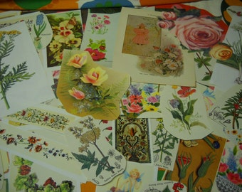 53 Pieces Ephemera Pack Floral Theme Flowers Botanical Many Vintage Collage Mixed Media Altered Art Journals Scrapbooks