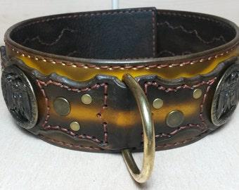 leathercollar • dogcollar • rivetcollar