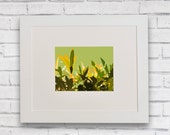 Framed Abstract Foliage Print, High quality Giclee print, Abstract Green Leaf Print, Botanical leaf print, Gift for gardener, 27