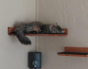 Floating Corner Cat Bed / Shelf - w/ Hidden Brackets