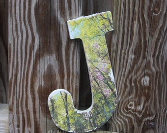 Custom Made Letter with Photograph