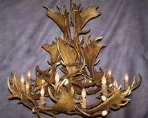 Real Antler Custom Fallow Deer Chandelier Light, Rustic