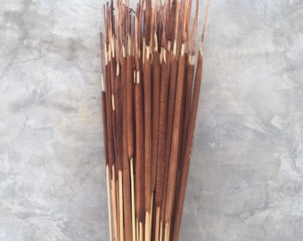 Dried pencil cattails, Dried Flowers, Wedding flowers, Home decor