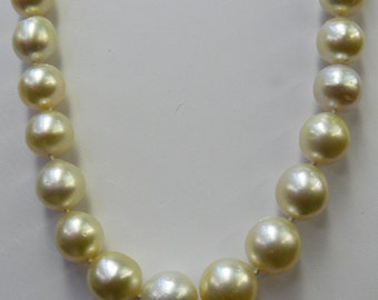 South Sea White Semi Round Pearl Necklace 12.8x13.1mm to10.9x9.1mm 18 1/2 Inches